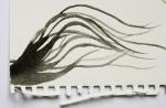 Preparatory work - painting Naoko's hair