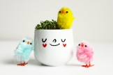Personalised Easter egg cup with chicks and alfalfa sprout seeds to grow hair